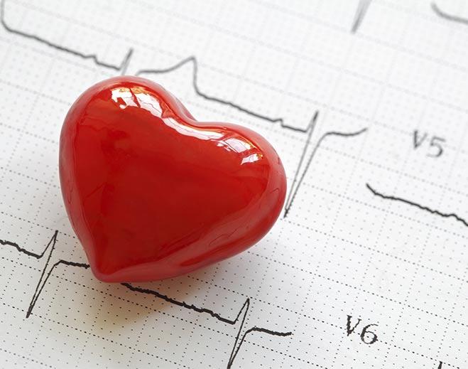 cardiology-heart-care-ekg/